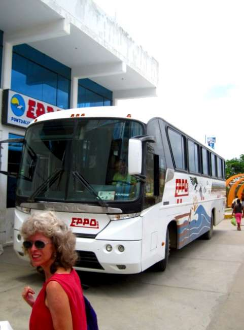 Mancora Beaches and Sunsets Eppo bus