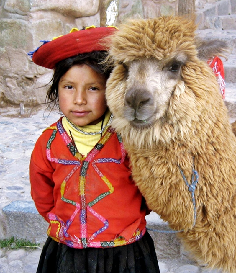 Peruvian girl with llama traditional clothing